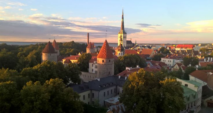 Climbing to the hill in the old town is one of the most popular thing to do in Tallinn. And the view makes it worth of doing.