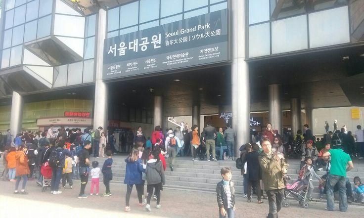 서울대공원 2회차 장터가 시작되었습니다.  대공원을 찾는 많은 인파