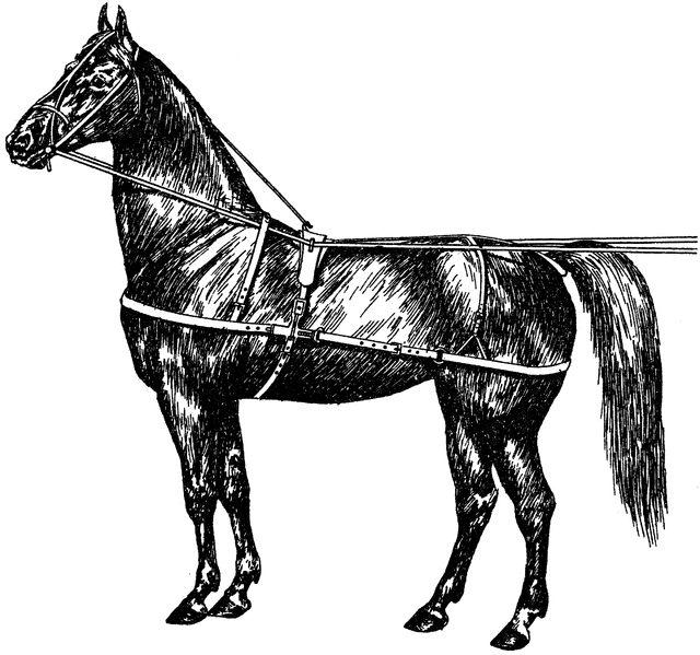 Original Use Horse Harness
