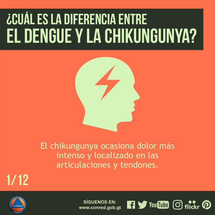 Chikungunya ocasiona dolor más intenso y localizado en las articulaciones y tendones.