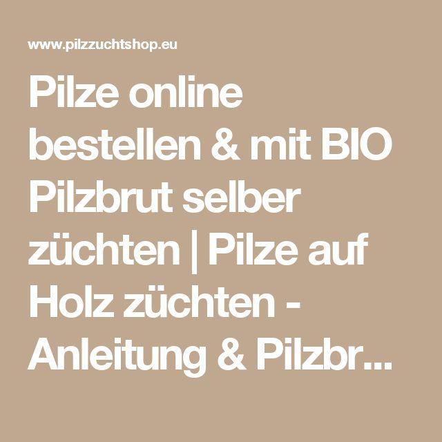 Cool Pilze online bestellen u mit BIO Pilzbrut selber z chten Pilze auf Holz z chten Anleitung