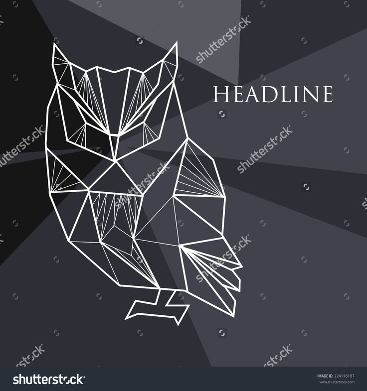 Résultats Google Recherche d'images correspondant à http://image.shutterstock.com/z/stock-vector-vector-illustration-with-geometric-background-and-doodle-owl-224118187.jpg