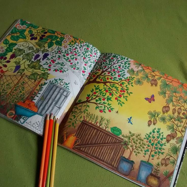 Double Page Pumpkin See More Johanna Basford Secret GardenColoring Books OrchardsForestsColouring