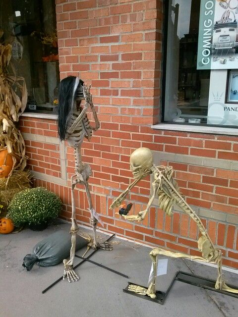 northville halloween skeleton displays this is hilarious skeleton proposing wspider ring so - Halloween Display Ideas