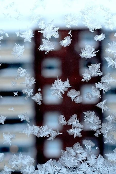 Icy crystals forming on the window panes...loved to look at them when I was a kid. Now we have storm windows and central heating and these wonders are disappearing.