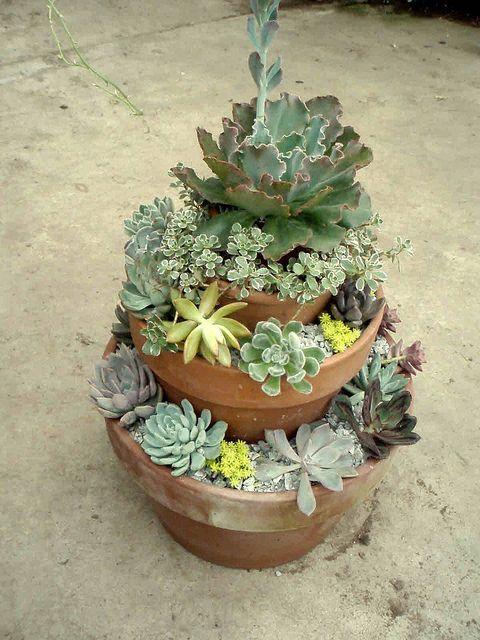 Stacked Succulent Pots: Gardens Ideas, Gardens Decor, Succulents Can, Gardens Design Ideas, Succulents Gardens, Tiered Succulents, Herbs Gardens, Clever Ideas, Interiors Gardens