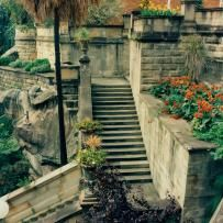Restored Clarens garden steps at HMAS Kuttabul, 1995 Today, the site of Clarens…