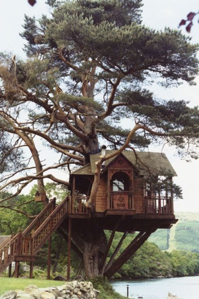 1000 Images About Cool Tree Houses On Pinterest Cabin