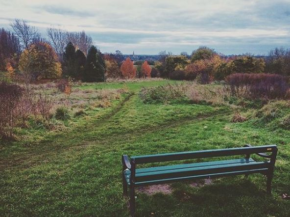 Bradlaugh Fields