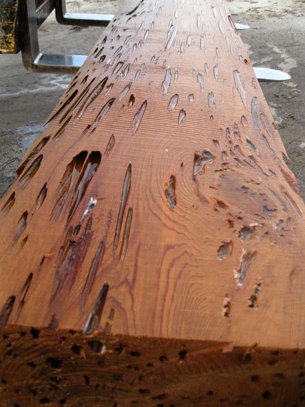best  about Dead Head Cypress or Pecky Wood on Pinterest