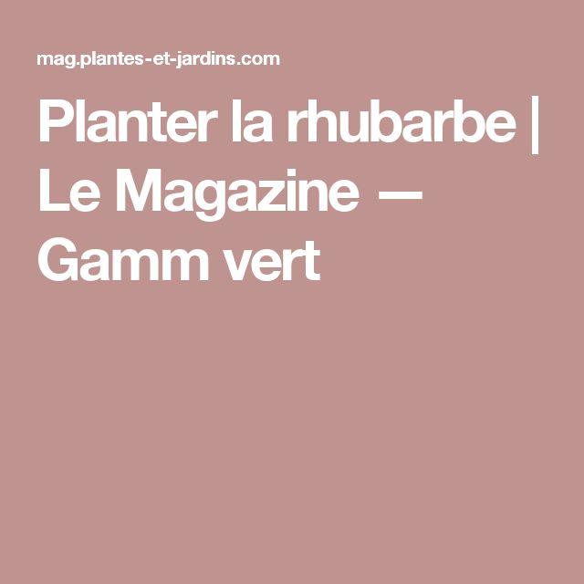 Planter la rhubarbe | Le Magazine — Gamm vert