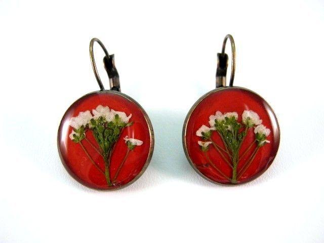 Flowers of Alyssum on red background preserved in resin.  http://en.dawanda.com/product/49265890-Ohrringe---Steinkraeuter