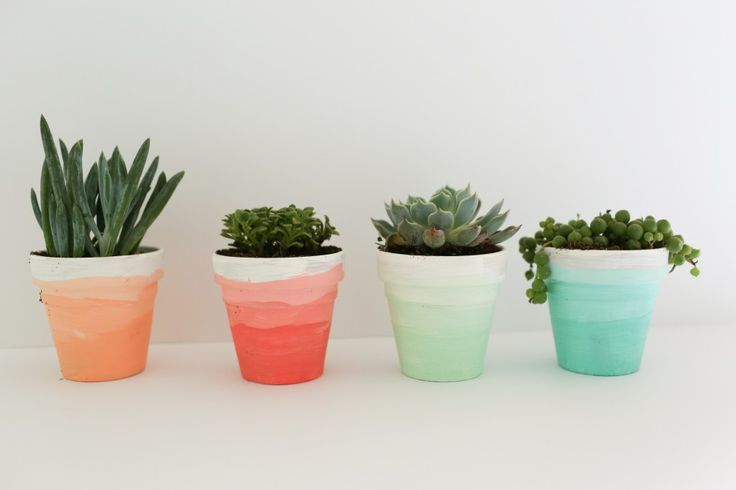 A DIY tutorial that shows you how to create these ombre succulent pots.  Perfect for your home or for a party!   www.homestead128.com