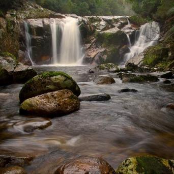 Halls Falls - North East Tasmania Tourism