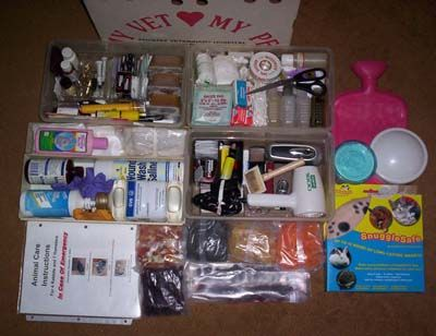 Guinea Pig Emergency Kit Example. Link to list                              …