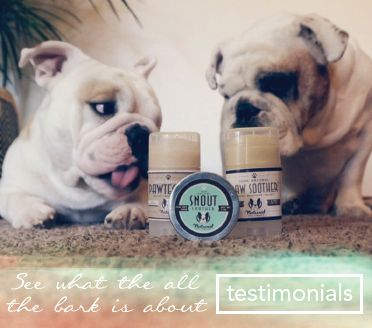 Natural Dog Company | Heal Your Dog's Dry Nose and Paws