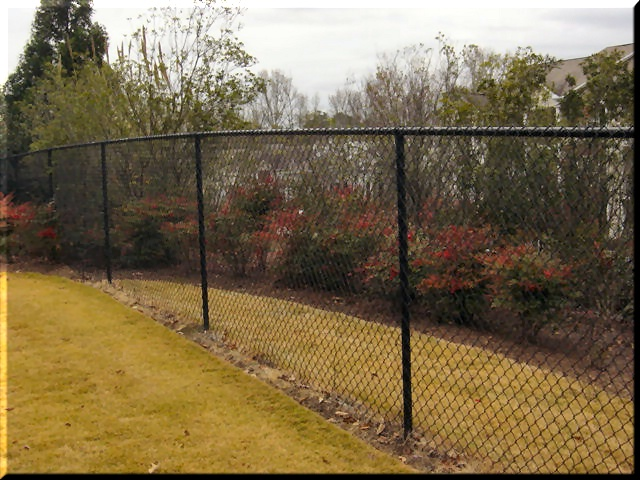 Chain link fences don't have to be ugly. View our chain link gallery online at www.fenceworksofga.com