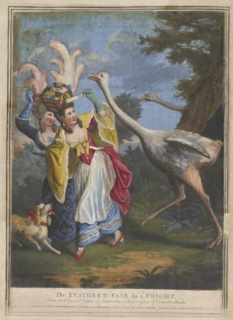 The Feather'd Fair in a Fright.  Hand-coloured mezzotint, 1777  Carrington Bowles after John Collet (publisher)  British Museum