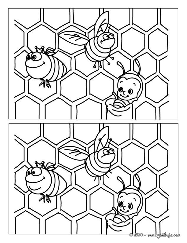 fichas diferencias abejas infantil - Buscar con Google
