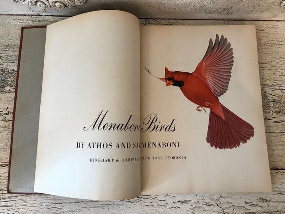 Menaboni S Birds 1950 Gorgeous Bird Book With Color Etsy Bird Book Birds Altered Art Projects
