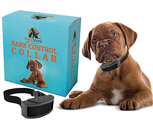 Best price on No Bark Collar by Street Smart Pets - Safe Anti Bark Collar for Your Dog - Bark Control Collar - Voice Activated No-Bark Dog Collar - 24 Month No Excuse Guarantee  See details here: http://allforpetsshop.com/product/no-bark-collar-by-street-smart-pets-safe-anti-bark-collar-for-your-dog-bark-control-collar-voice-activated-no-bark-dog-collar-24-month-no-excuse-guarantee/    Truly a bargain for the brand new No Bark Collar by Street Smart Pets - Safe Anti Bark Collar for Your Dog…