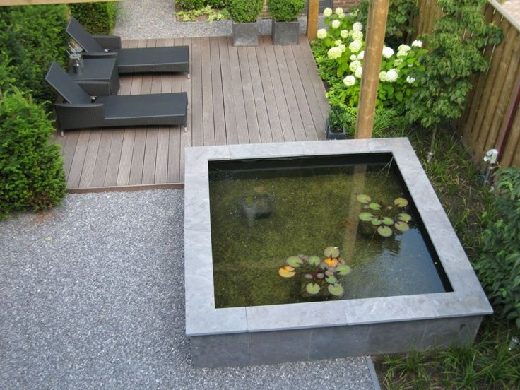 Small deck sun lounge area with raised contemporary pond for Modern garden pond designs