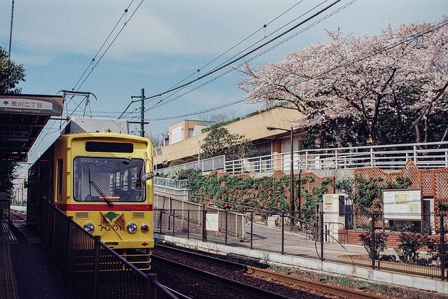 JAPANESE SUBURBIA - yukku-ri:   Sakura and Toden by xperiane...