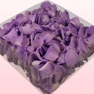 17 best images about lila hochzeit on pinterest deko. Black Bedroom Furniture Sets. Home Design Ideas