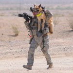 Soldier Dogs: The Untold Story of America's Canine Heroes (by Maria Goodavage)…