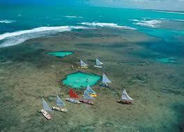 Essa ilha surge com a maré baixa e desaparece na maré alta. #João Pessoa - Paraíba - Brasil. O paraíso é aqui!