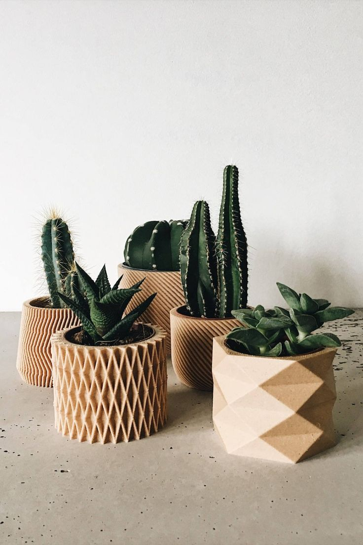 Set of 4 Mini Wood Cactus & Succulent planters Pot cover Design planters Geometric Minimalist Scandinavian decor Planter gift Wedding decor