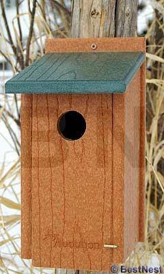 Audubon Recycled Plastic Bluebird House