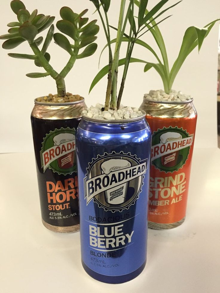 Beer Can Planters. Local Ottawa brewery tall boys. Many designs to choose from.  Bring home a piece of Ottawa's craft beer scene - paired in the best way with some locally grown plants by Terra Velta. We've got four different breweries to choose from - Big Rig, Broadhead, Beyond the Pale, and Kichesippi.  Available for in-store pick up only (so you can pick exactly which cool plant fits your style!)  Grown and supplied by Terra Velta in Ottawa, Ontario.