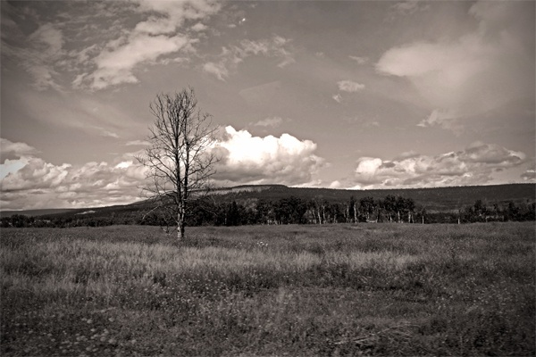 Nemaiah Valley  By Laura Kelsey - wordsmore.com