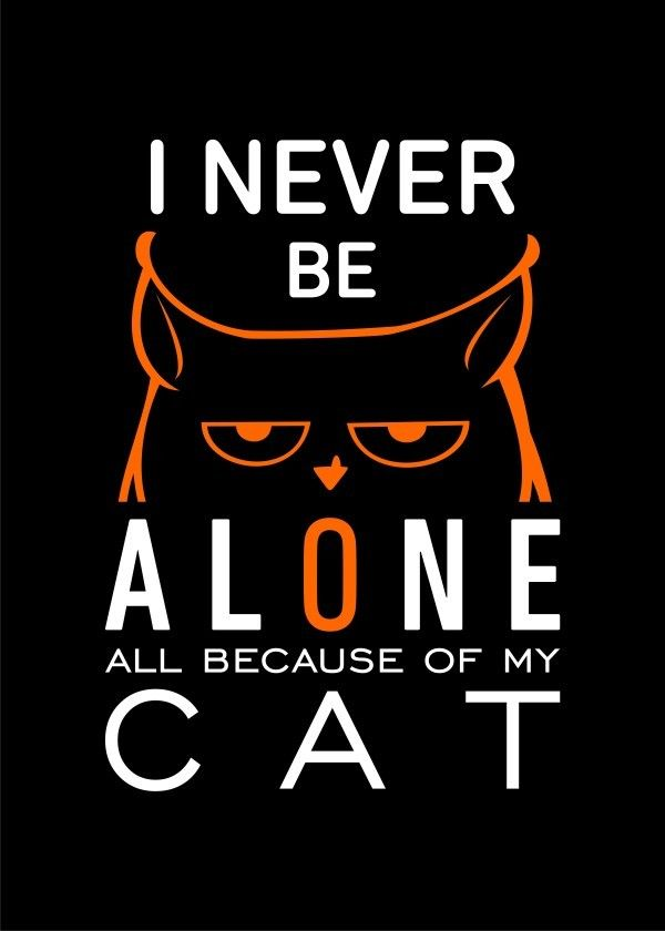 I never be #alone - all because of my #cat on metal #poster.  Available on Displate https://displate.com/displate/170963