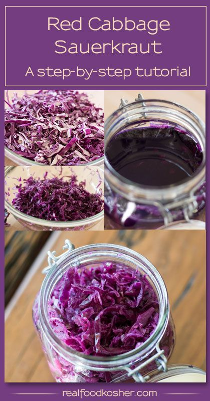 red cabbage sauerkraut tutorial | real food kosher