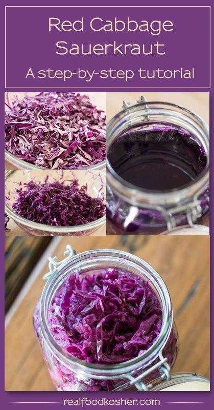 red cabbage sauerkraut tutorial   real food kosher