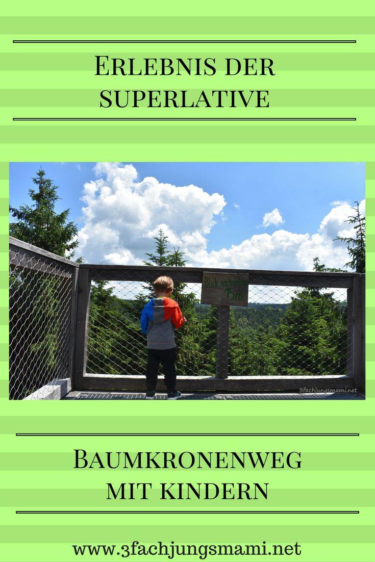 Besondere Ausflugsziele in Österreich - Baumkronenweg mit Kindern