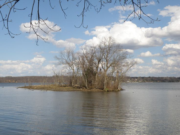 https://flic.kr/p/6TMmkc | Potomac River View near Mt. Vernon, VA | Potomac River, Mt. Vernon Parkway, Fairfax Co., VA - March 29, 2009