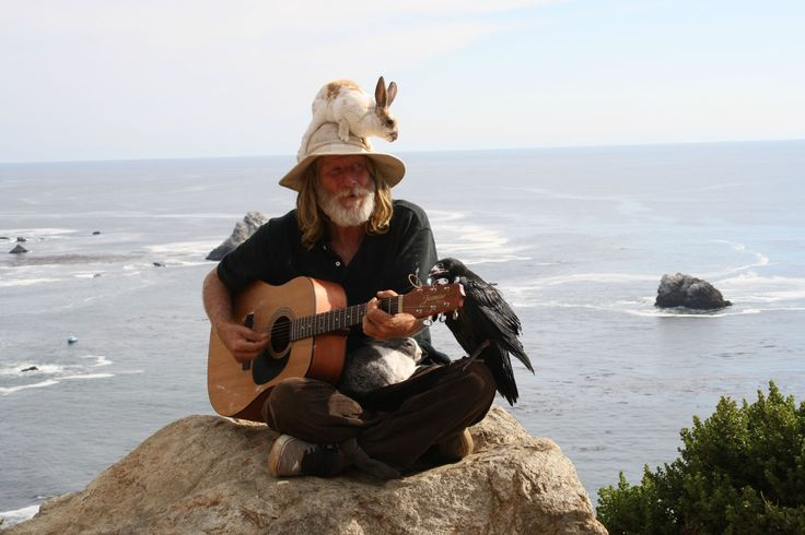 Just a dude chillin on a rock by the ocean with his guitar, a couple bunnies, and a raven.