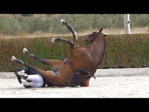 7 best images about WORST RIDING ACCIDENTS... on Pinterest ...