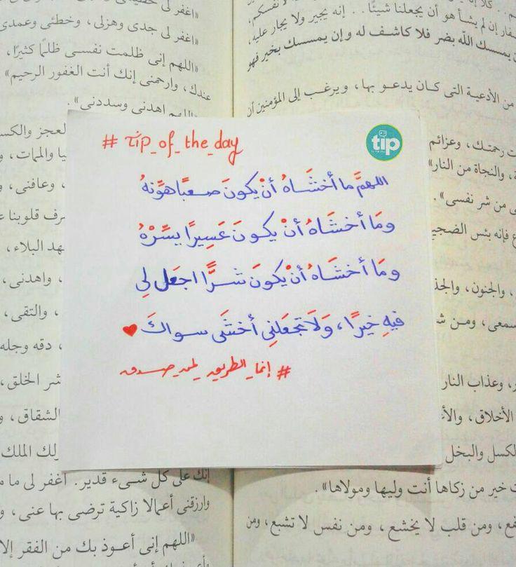#allah #tip_of_the_day #life #daily #sunan #teachings #islamic #posts #islam #holy #quran #good #manners #prophet #muhammad #muslims #smile #hope #jannah #paradise #quote #inspiration #ramadan  #رمضان #الله #الرسول #اسلام #قرآن #حديث #سنن #أمل #جنة