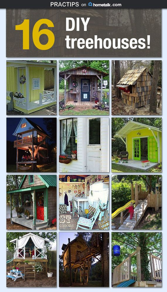 Check out these amazing treehouses!
