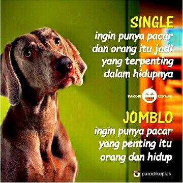 Single vs jomblo