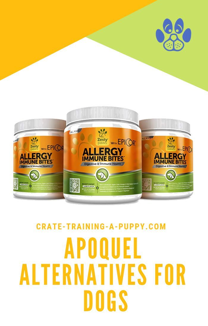 Vets Prescribe Apoquel For Dogs With Itchiness Owners Report Serious Side Effects Here Are The Best Safe Effective Apoqu Apoquel Dog Allergies Canine Health