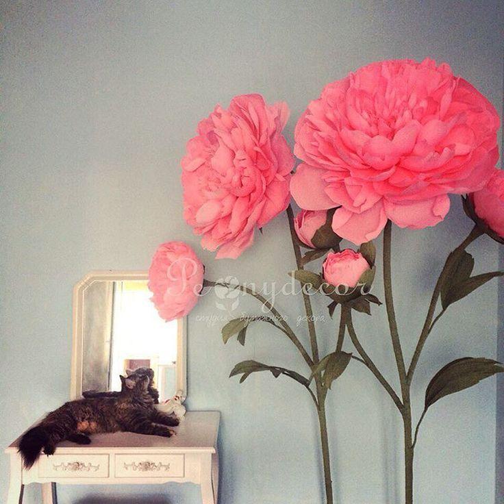 Думаю, Дуняша  задумалась,какого размера мышки если такие большие цветы  #peony #peonydecor #пиондекор#vrn #кот #котэ #котейка#воронеж #пионы #большиецветыизбумаги #украшенияпраздников #декор#декорсвадьбы