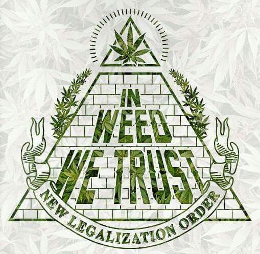 how to start a medical marijuana growing business