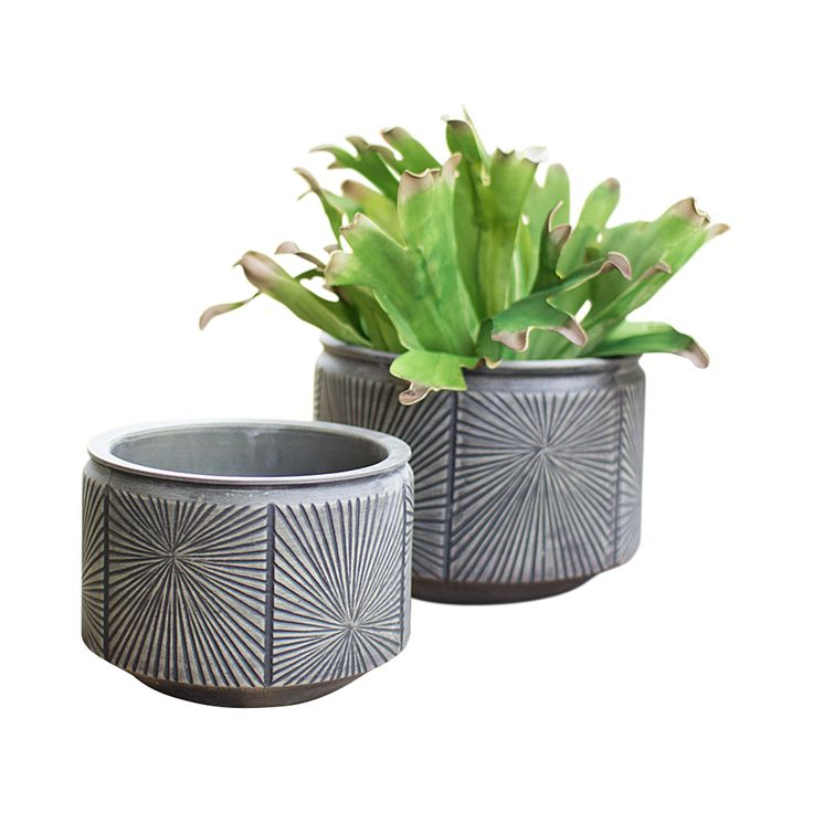 You'll love the decidedly mid-century appeal of these Echo Dream Planters. Nicely crafted in ceramic with a soft gray finish, this set offers the distinctive sunrise motif found in 1960s decòr. Bring a...  Find the Echo Dream Planter - Set of 2, as seen in the A Stay at the Landsby Collection at http://dotandbo.com/collections/a-stay-at-the-landsby?utm_source=pinterest&utm_medium=organic&db_sku=112631