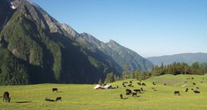 The USP of Pabbar valley is that it is located among the most prosperous apple orchard belt in India. It contains deep forests of deodar and oak and dense orchards all around the valley. A hand in hand natures walk with your loved ones or hiking trip with your group?  Read 10 Lesser Known Vacation Spots in Himachal Pradesh: http://www.flarebuzz.com/2016/04/10-lesser-known-vacation-spots-in-himachal-pradesh/