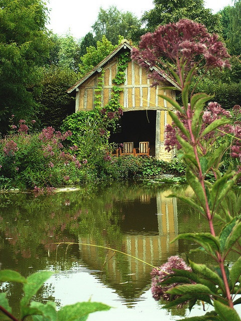 Cambremer. Au bord de l'étang - At the edge of the pond by Michele*mp, via Flickr